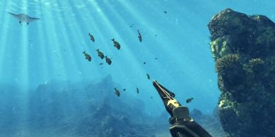 fun aiming at stingray and other fish
