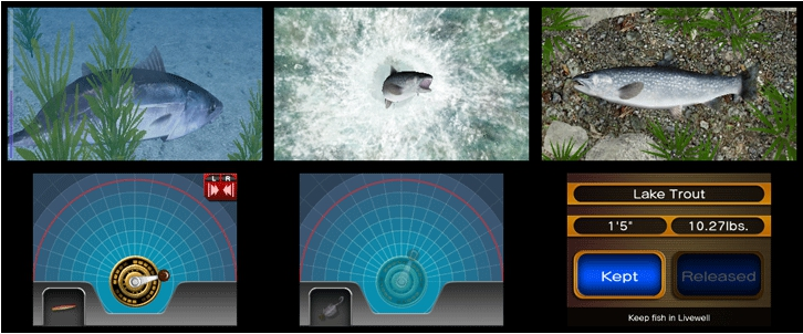 reel fishing paradise 3d gamespot