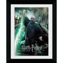 Harry Potter and the Deathly Hallows Part 2 Voldemort - Collector Print - 30 x 40cm