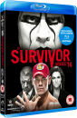 WWE: Survivor Series 2014