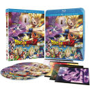 Dragon Ball Z: Battle Of Gods Collector's Edition