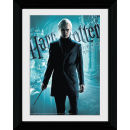 Harry Potter and the Half Blood Prince Draco Malfoy - Collector Print - 30 x 40cm