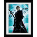 Harry Potter and the Half Blood Prince Ron Weasley- Collector Print - 30 x 40cm