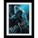 Harry Potter and the Half Blood Prince Dumbledore - Collector Print - 30 x 40cm