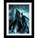 Harry Potter and the Half Blood Prince Group - Collector Print - 30 x 40cm
