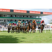 2 for 1 Winning Raceday Package Special Offer