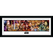 "Star Wars Collection - 30"""" x 12"""" Framed Photographic"