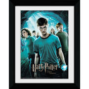 Harry Potter and the Order of the Phoenix Main - Collector Print - 30 x 40cm