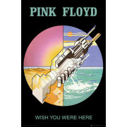 Pink Floyd Wish You Were Here 2 - Maxi Poster - 61 x 91.5cm