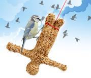 Bungee Bird Feeder