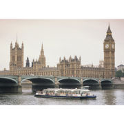 Thames Cruise Rover Pass for Two Special Offer