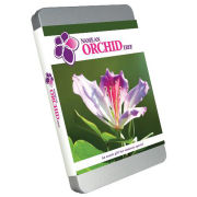 Name an Orchid Tree - Unique Gift Tin