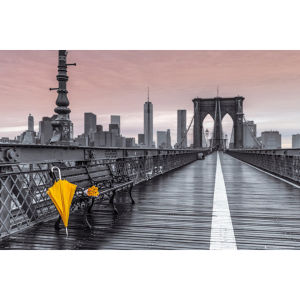 Assaf Frank Brooklyn Bridge Umbrella Maxi Poster (61 x 91.5cm)