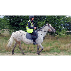 Beginner's Horse Riding in Bedfordshire