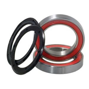 Campagnolo Powertorque Bearing Kit