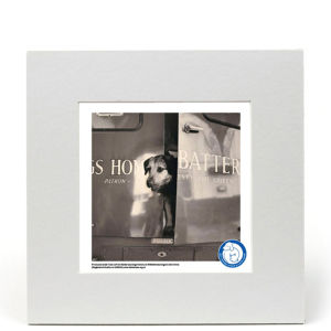 Battersea Dogs Home Fine Art Print - Hello