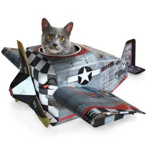 Cat play houses - Plane