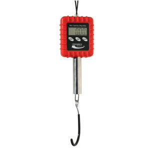 Feedback Sports Alpine Digital Scale