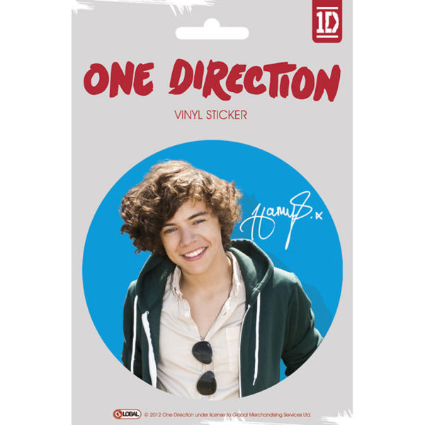 One Direction Harry Colour Vinyl Sticker 10 X 15cm