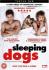 Sleeping Dogs: Image 1
