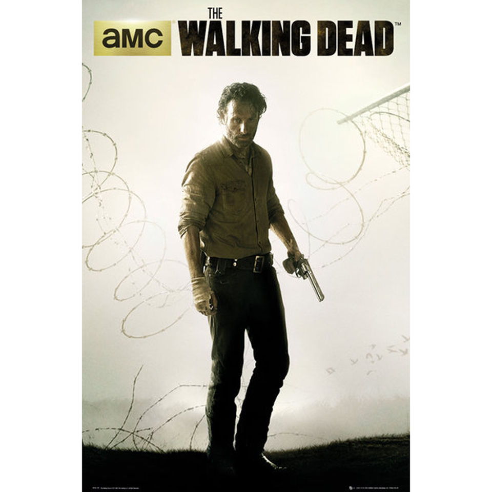 the walking dead season 4 fence maxi poster 61 x 91. Black Bedroom Furniture Sets. Home Design Ideas