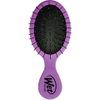Wet Brush Squirt Classic - Purple: Image 1
