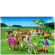 Playmobil Horse Farm Paddock with Horses and Pony (5227)