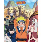 Naruto Hokage - 16 x 20 Inches Mini Poster