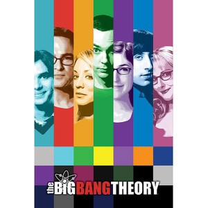 Big Bang Theory Signals - 24 x 36 Inches Maxi Poster