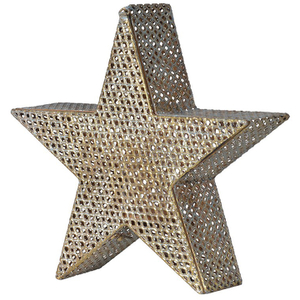 Bark & Blossom Star Candle Holder
