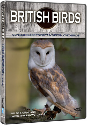 British Birds: Fields and Farmlands