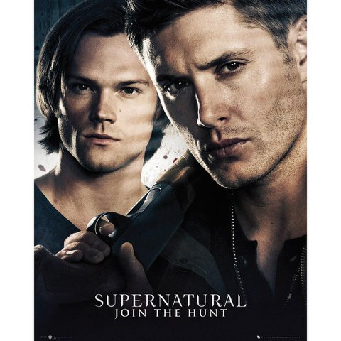 Supernatural Brothers - 16 x 20 Inches Mini Poster