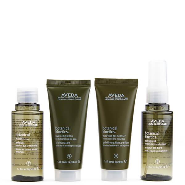 Aveda Botanical Kinetics Water Earth Skincare Kit - Normal/Fet (4 produkter)