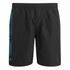 Animal Men's 19 Inch Belos Boardshorts - Black: Image 1