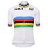 Santini UCI World Road Champion Short Sleeve Jersey - White: Image 2