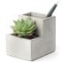 Concrete Desktop Planter and Pen Holder - Small: Image 1