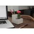 Concrete Desktop Planter and Pen Holder - Small: Image 5