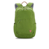 Fjallraven Raven 20L Backpack - Meadow Green: Image 1