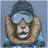 Animal Men's Skoar T-Shirt - Cadet Navy Marl: Image 3