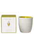 Harlequin Limosa Fougere and Vetivert Reed Tumbler Candle: Image 1