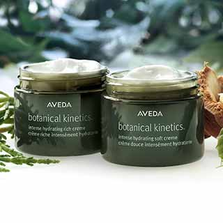 Aveda Botanical Kinetics