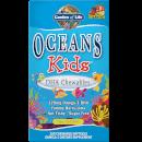 Oceans Kids' DHA Chewables Omega-3 Softgels - Berry Lime - 120 Softgels