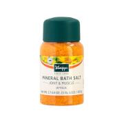 Kneipp Arnica Bath Salts 17.63 oz