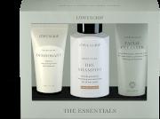 Löwengrip The Essentials Set