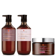 Theorie Transform Damaged Hair Pack