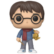 Harry Potter Holiday Harry Potter Funko Pop! Vinyl