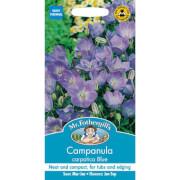 Mr. Fothergill's Campanula Carpatica Blue Seeds