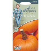 DD Pumpkin Seeds