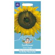 Mr. Fothergill's Sunflower Giant Single Seeds
