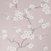 Fresco Apple Blossom Pink Wallpaper